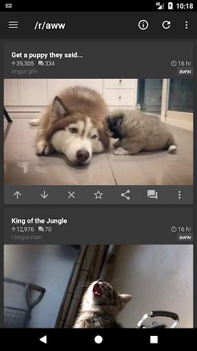 rif is fun golden platinum for Reddit android2mod screenshots 4