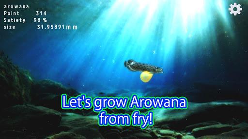 Arowana raising from fry  screenshots 1