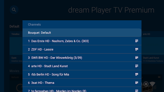 dream Player IPTV for Android TV 5