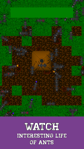 Ant Evolution - ant colony and terrarium simulator 1.4.0 screenshots 1
