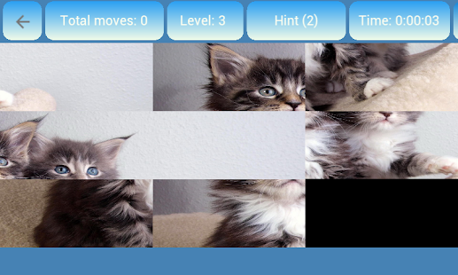 Collect picture Cats & kittens Screenshot