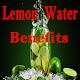Lemon water benefits para PC Windows