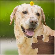 Life Jigsaw Puzzles