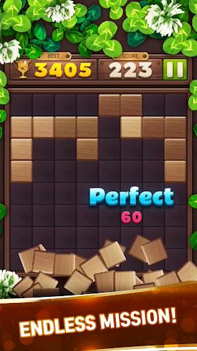 Wood Block Puzzle Game 2021  screenshots 12