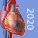 生理学と病理学:生体プロセスと疾患