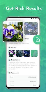 Plant Story - Plant Identifier & Gardening