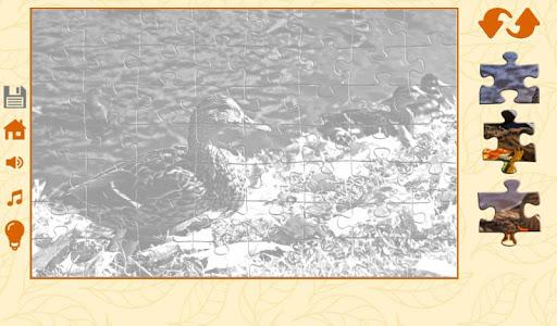 Puzzles autumn 1.2.5 screenshots 3