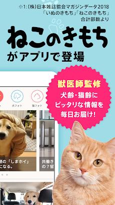 いぬのきもち・ねこのきもち 犬猫に毎日役立つペット情報のおすすめ画像2