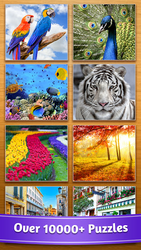 Jigsaw Puzzle 4.24.012 screenshots 2