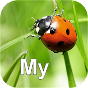 App Icon for Nature My - Europe App in India Play Store