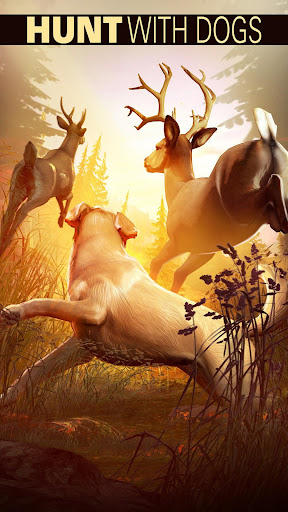 Foto do Deer Hunter 2018