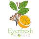 Everfresh para PC Windows