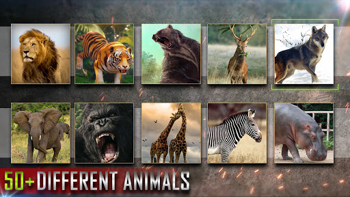 Wild Deer Hunter 2021: New Animal Hunting Games  screenshots 3