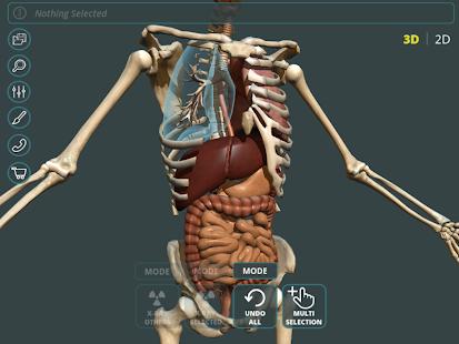 Visual Anatomy 3D | Human 1.2 Screenshots 19