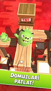 Angry Birds AR  Isle of Pigs Apk İndir 3
