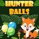 Hunter Balls para PC Windows