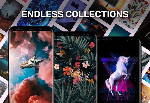 Walli - 4K, HD Wallpapers & Backgrounds modavailable screenshots 3