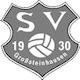 SV 1930 Großsteinhausen