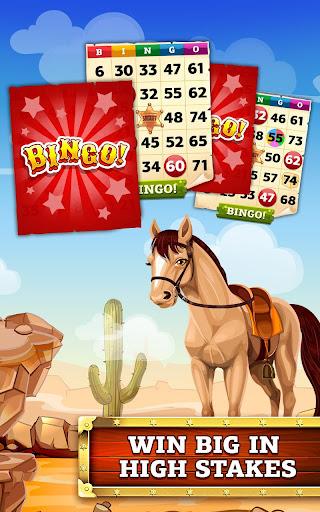 Bingo Cowboy Story screenshots 2