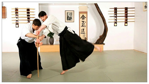 learn aikido and martial arts screenshot 2