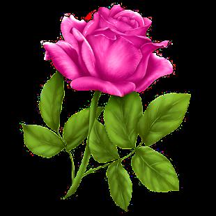 Good morning Flower Wallpapers Colorful Roses 4K 12.1.6 Screenshots 1