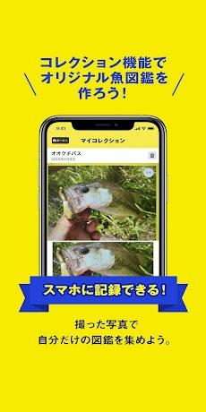 フィッシュ-AIが魚を判定する魚図鑑のおすすめ画像5