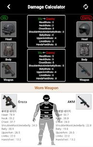 Guide for PUBG 3