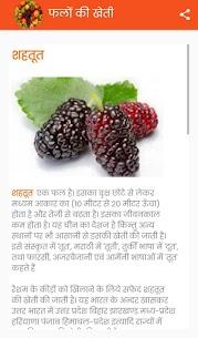 फलों की खेती 6
