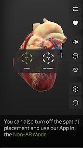 INSIGHT HEART 2