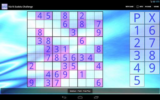 16x16 Sudoku Challenge HD 3.8.5 screenshots 6