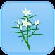 シンプル植物リスト〜山野草編〜 - Androidアプリ