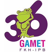 GAMET TRAVEL APK