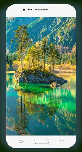 Forest Wallpaper HD Screenshots 11