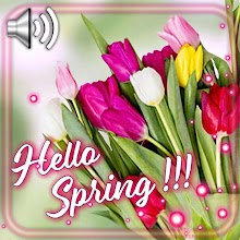 Greetings Spring Day Live Wallpaper Download on Windows