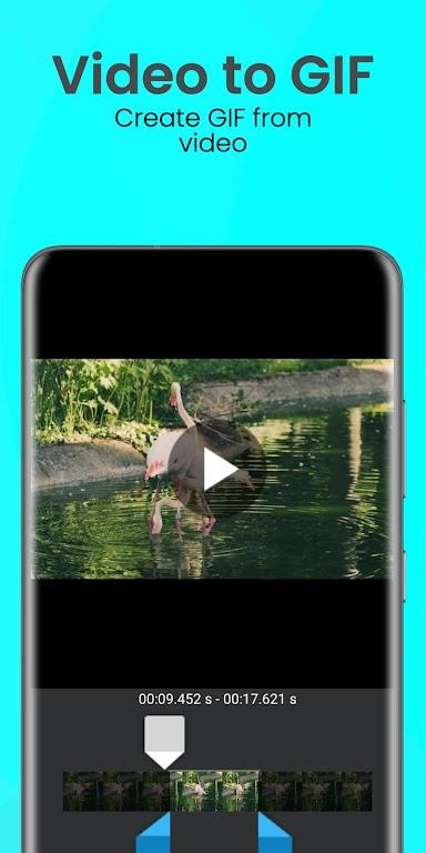 Easy GIF: GIF Editor, GIF Maker, Reface, Video GIF poster 5