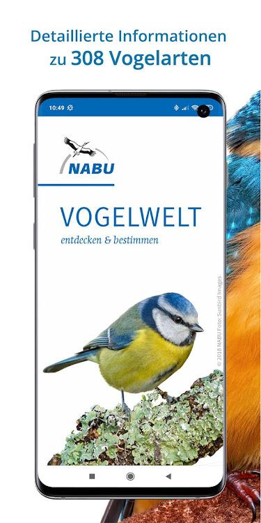 vogelarten kennenlernen und bestimmen freunde im internet kennenlernen