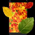 Autumn leaves 3D LWP APK