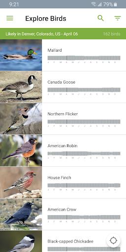 Merlin Bird ID by Cornell Lab screenshot 7