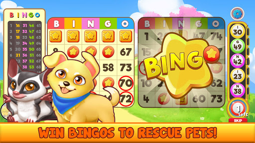 Bingo Pet Rescue 1.5.16 screenshots 11