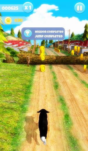 Dog Run 1.1.9 screenshots 17