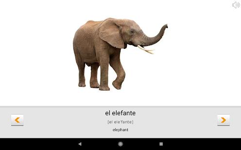 Learn Spanish words with Smart-Teacher Screenshot