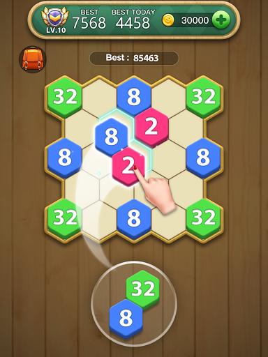 Hexa Block Puzzle  screenshots 12