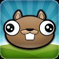 Noogra Nuts - The Squirrel APK
