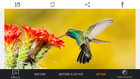 Photo Editor HDR FX Pro Paid Apk app for Android 2