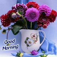 Everyday good morning wishes Icon