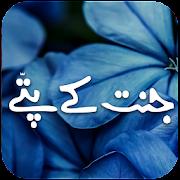 Jannat Ke Pattay Full Urdu Novel Offline