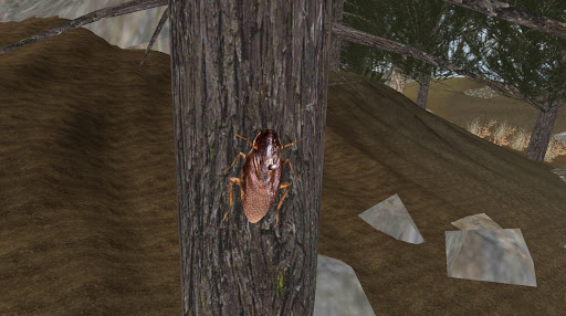 Cockroach Simulator - animal game  screenshots 4