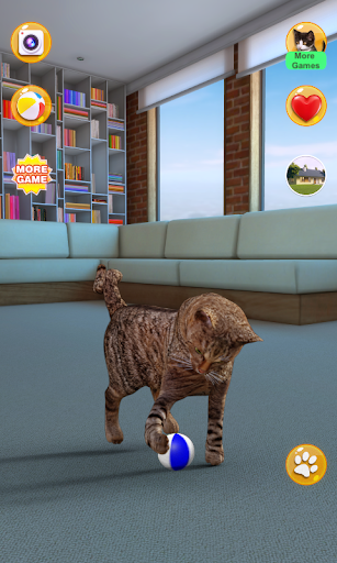 Talking Somali Cat 1.0.6 screenshots 2