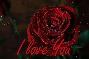 Romantic Love Images Gifs - I Love You Images Gif