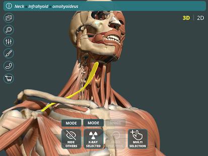 Visual Anatomy 3D | Human 1.2 Screenshots 9